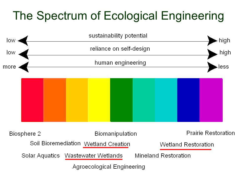 The Spectrum of Ecological Engineering