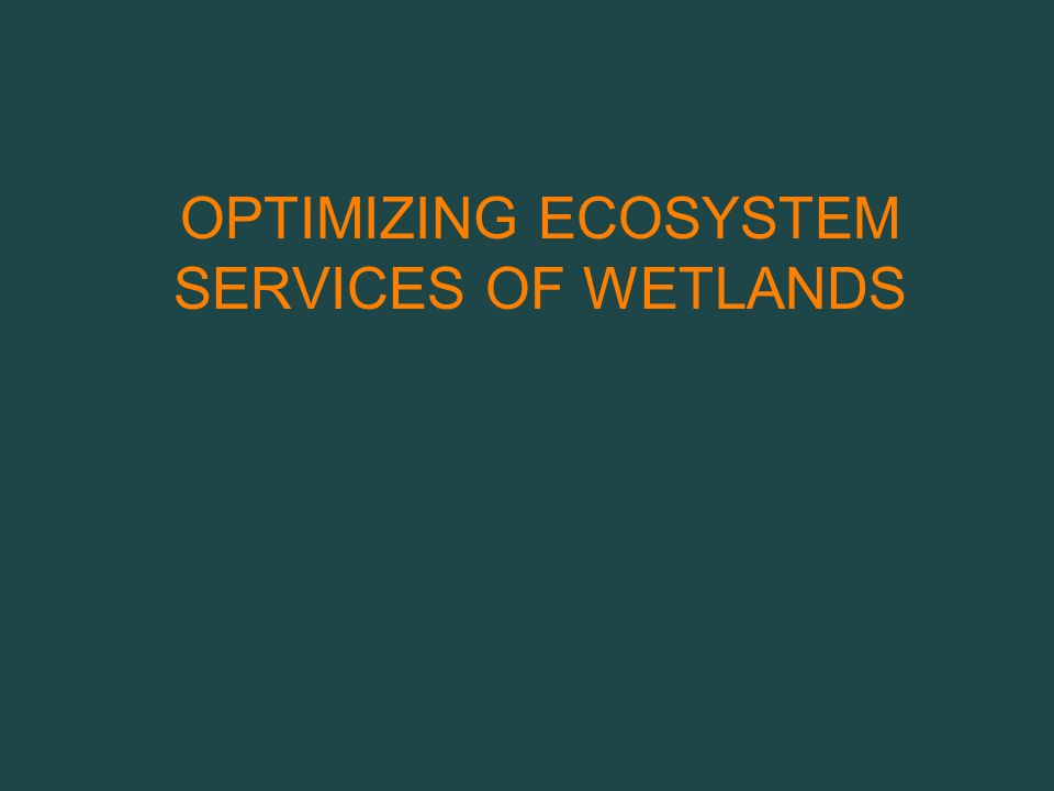 OPTIMIZING ECOSYSTEM SERVICES OF WETLANDS