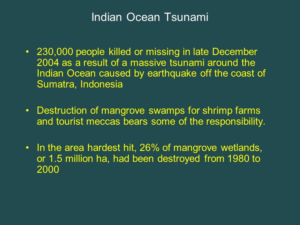 Indian Ocean Tsunami 230,000 people killed or missing in late December 2004 as a result of a massive tsunami around the Indian Ocean caused by earthquake off the coast of Sumatra, Indonesia Destruction of mangrove swamps for shrimp farms and tourist meccas bears some of the responsibility.