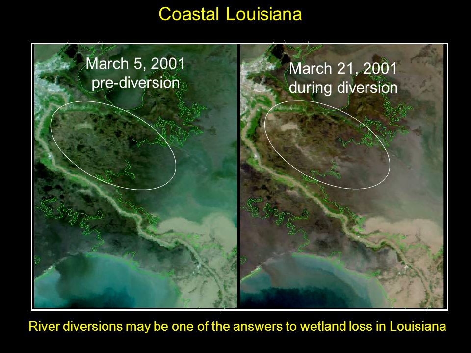 March 5, 2001 pre-diversion March 21, 2001 during diversion Coastal Louisiana River diversions may be one of the answers to wetland loss in Louisiana