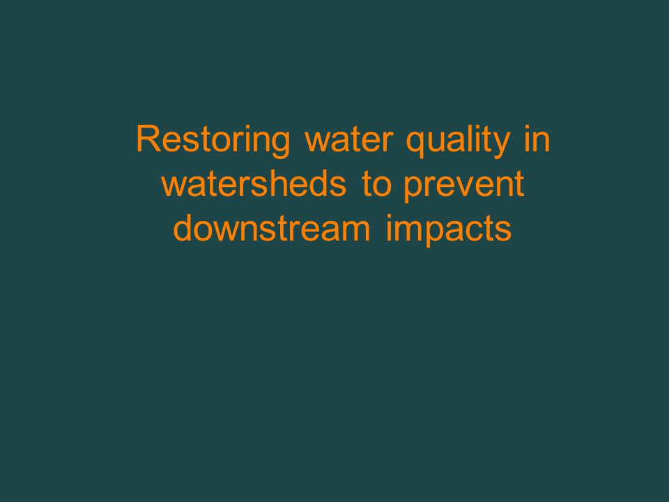 Restoring water quality in watersheds to prevent downstream impacts