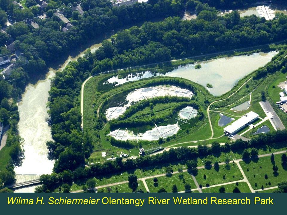 Wilma H. Schiermeier Olentangy River Wetland Research Park