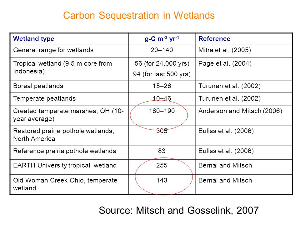 Wetland typeg-C m -2 yr -1 Reference General range for wetlands20–140Mitra et al.