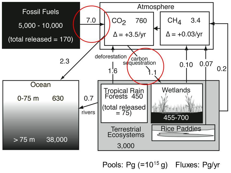 Fluxes: Pg/yrPools: Pg (=10 15 g)