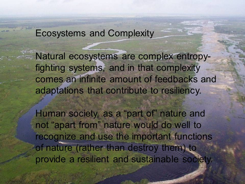 Ecosystems and Complexity Natural ecosystems are complex entropy- fighting systems, and in that complexity comes an infinite amount of feedbacks and adaptations that contribute to resiliency.