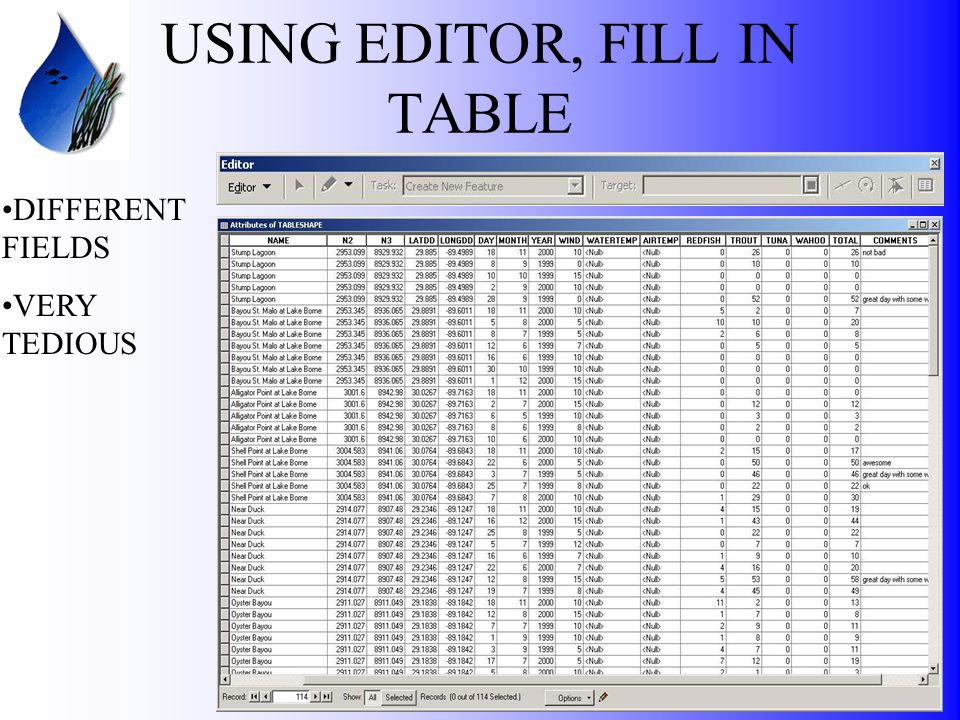 USING EDITOR, FILL IN TABLE DIFFERENT FIELDS VERY TEDIOUS