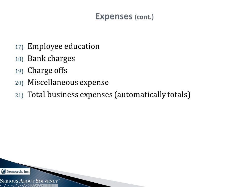 17) Employee education 18) Bank charges 19) Charge offs 20) Miscellaneous expense 21) Total business expenses (automatically totals)