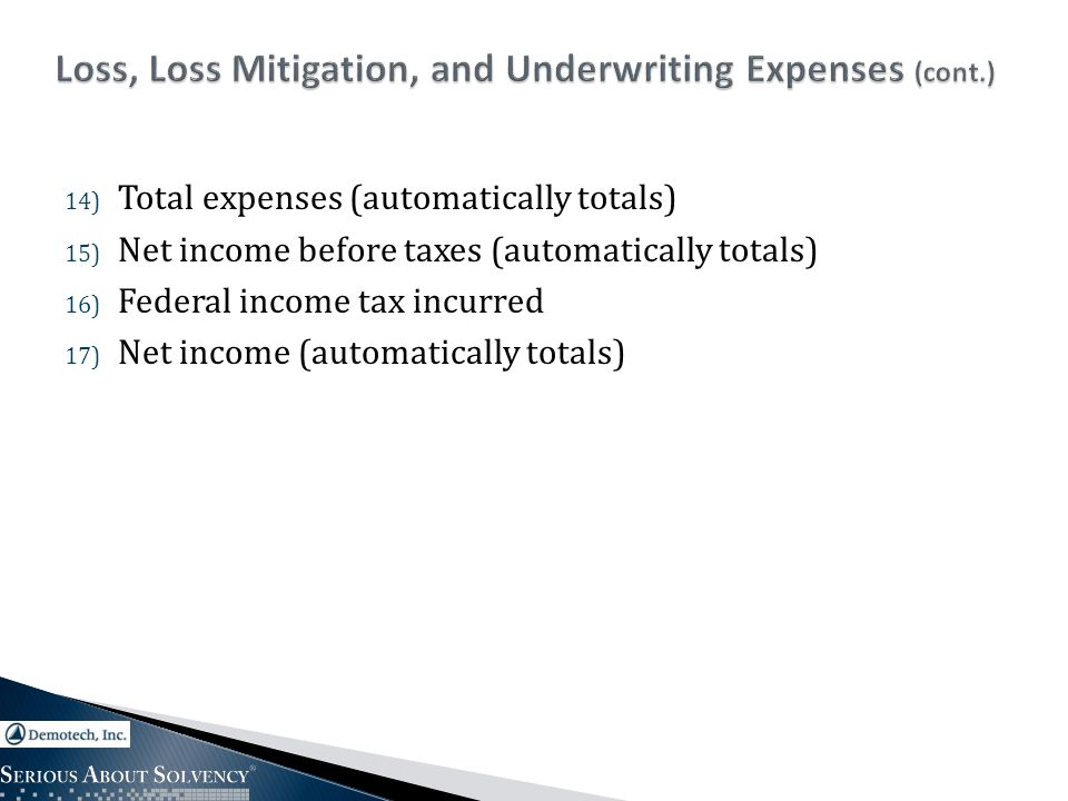 14) Total expenses (automatically totals) 15) Net income before taxes (automatically totals) 16) Federal income tax incurred 17) Net income (automatically totals)