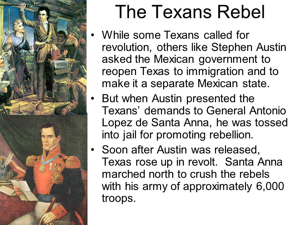 While some Texans called for revolution, others like Stephen Austin asked the Mexican government to reopen Texas to immigration and to make it a separ