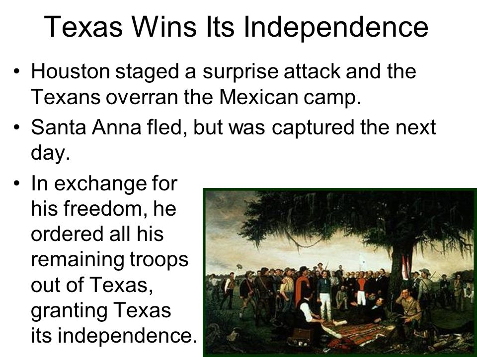 Houston staged a surprise attack and the Texans overran the Mexican camp. Santa Anna fled, but was captured the next day. In exchange for his freedom,