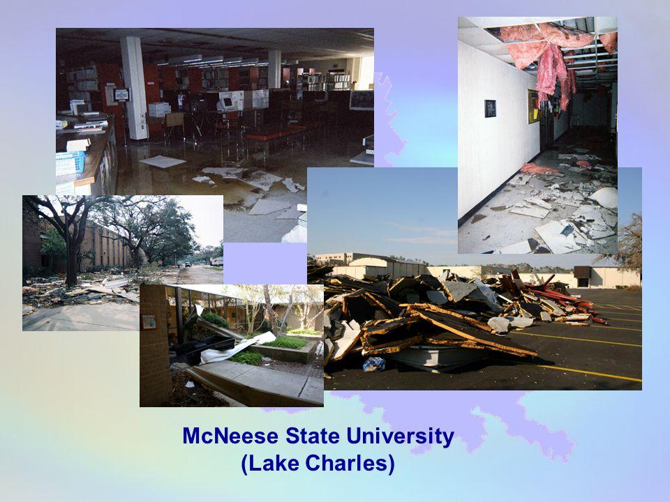 McNeese State University (Lake Charles)