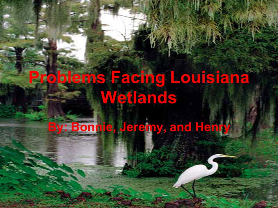 Problems Facing Louisiana Wetlands By: Bonnie, Jeremy, and Henry