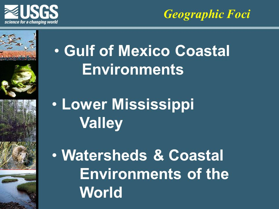 Gulf of Mexico Coastal Environments Lower Mississippi Valley Watersheds & Coastal Environments of the World Geographic Foci