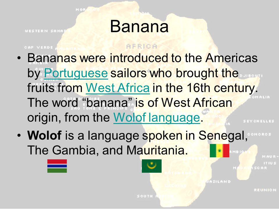 Banana Bananas were introduced to the Americas by Portuguese sailors who brought the fruits from West Africa in the 16th century.