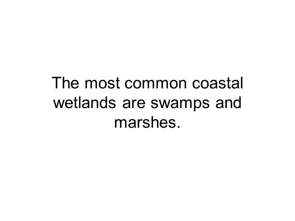 The most common coastal wetlands are swamps and marshes.