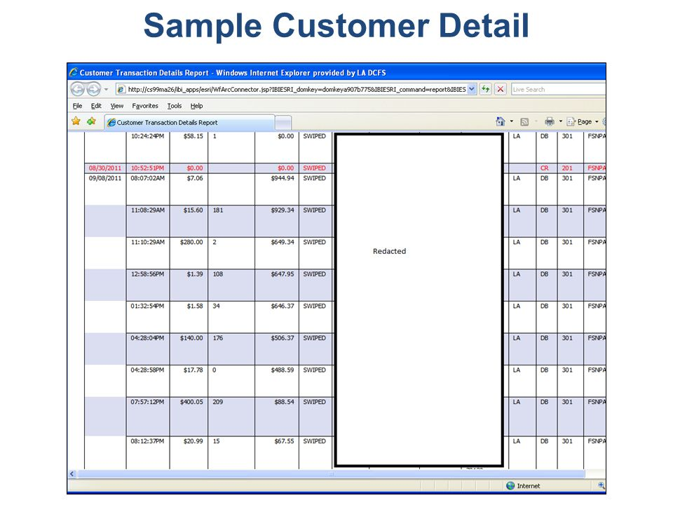 Optimizing Performance in Volatile Times Sample Customer Detail