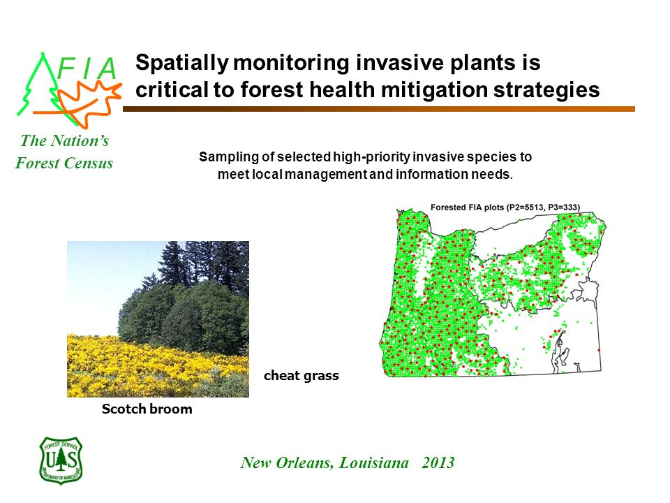 F I A New Orleans, Louisiana 2013 The Nation's Forest Census Spatially monitoring invasive plants is critical to forest health mitigation strategies Sampling of selected high-priority invasive species to meet local management and information needs.
