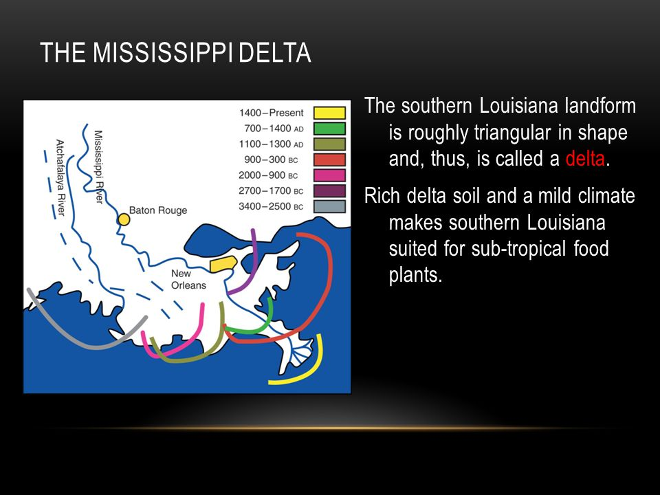 THE MISSISSIPPI DELTA The southern Louisiana landform is roughly triangular in shape and, thus, is called a delta.