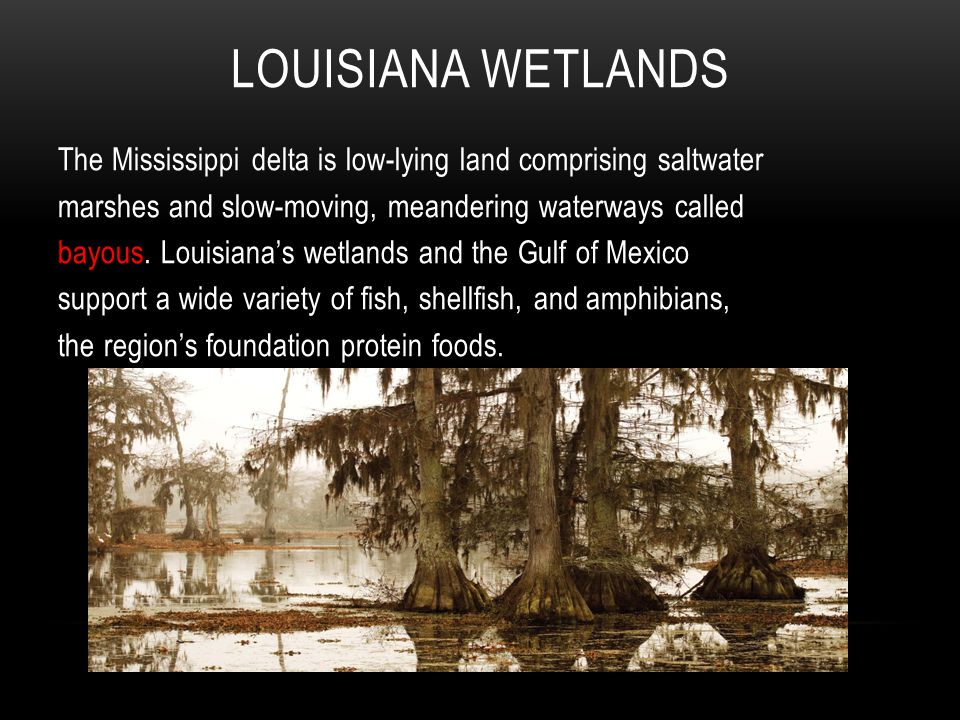 LOUISIANA WETLANDS The Mississippi delta is low-lying land comprising saltwater marshes and slow-moving, meandering waterways called bayous.