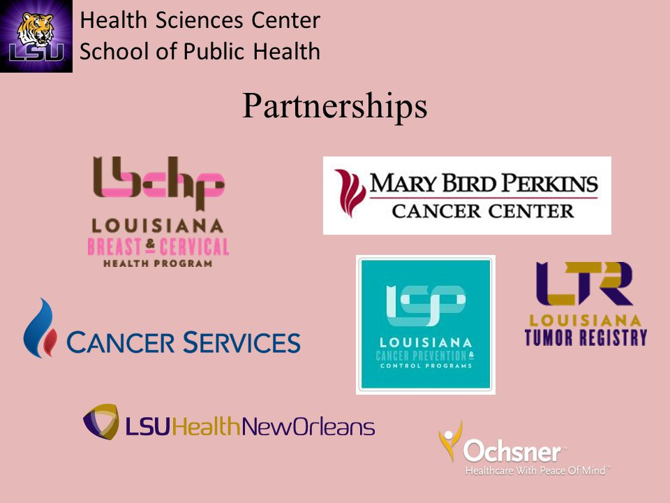 Health Sciences Center School of Public Health Why Young Breast Cancer Survivors.