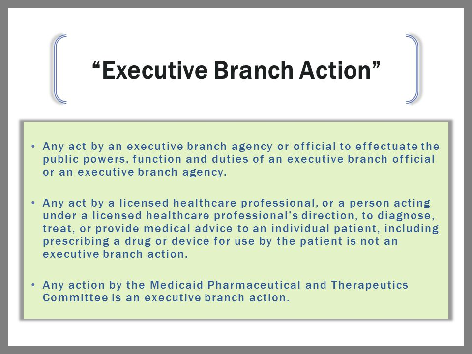Any act by an executive branch agency or official to effectuate the public powers, function and duties of an executive branch official or an executive