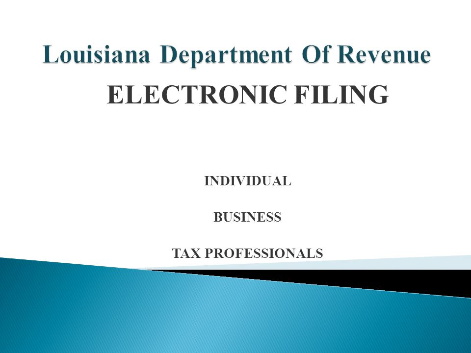 ELECTRONIC FILING INDIVIDUAL BUSINESS TAX PROFESSIONALS