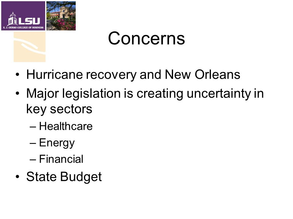 Concerns Hurricane recovery and New Orleans Major legislation is creating uncertainty in key sectors –Healthcare –Energy –Financial State Budget