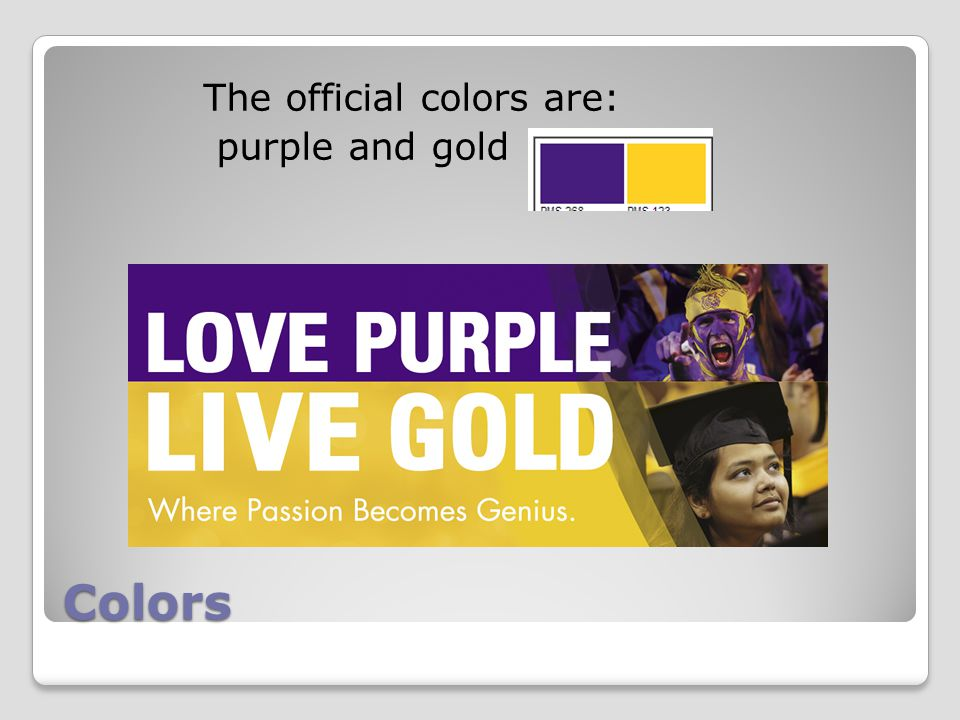 Colors The official colors are: purple and gold