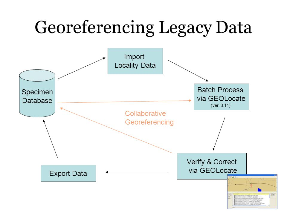 Georeferencing Legacy Data Import Locality Data Batch Process via GEOLocate (ver. 3.11) Verify & Correct via GEOLocate Export Data Specimen Database C