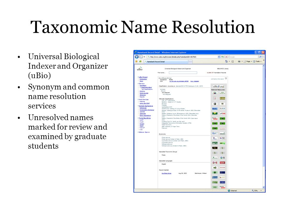 Taxonomic Name Resolution Universal Biological Indexer and Organizer (uBio) Synonym and common name resolution services Unresolved names marked for review and examined by graduate students