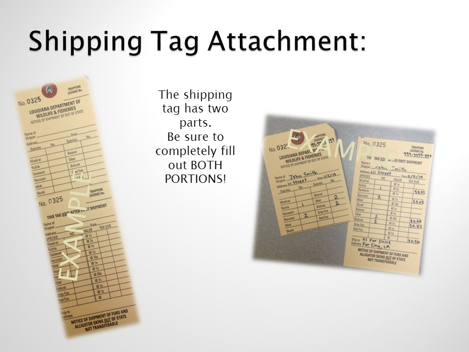 EXAMPLE The shipping tag has two parts. Be sure to completely fill out BOTH PORTIONS! EXAMPLE