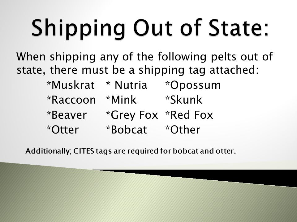 When shipping any of the following pelts out of state, there must be a shipping tag attached: *Muskrat* Nutria *Opossum *Raccoon*Mink*Skunk *Beaver*Gr