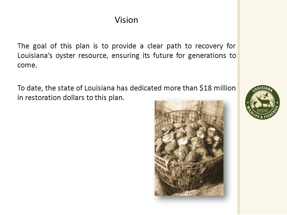 Vision The goal of this plan is to provide a clear path to recovery for Louisiana's oyster resource, ensuring its future for generations to come.