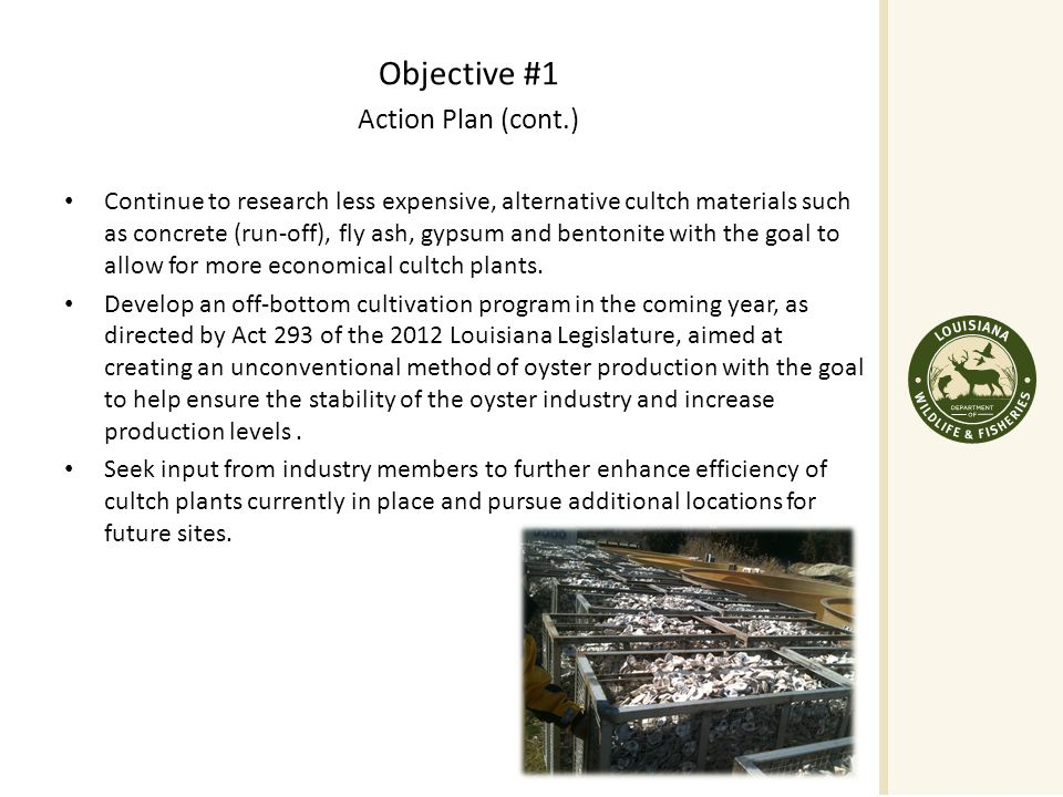Objective #1 Action Plan (cont.) Continue to research less expensive, alternative cultch materials such as concrete (run-off), fly ash, gypsum and bentonite with the goal to allow for more economical cultch plants.