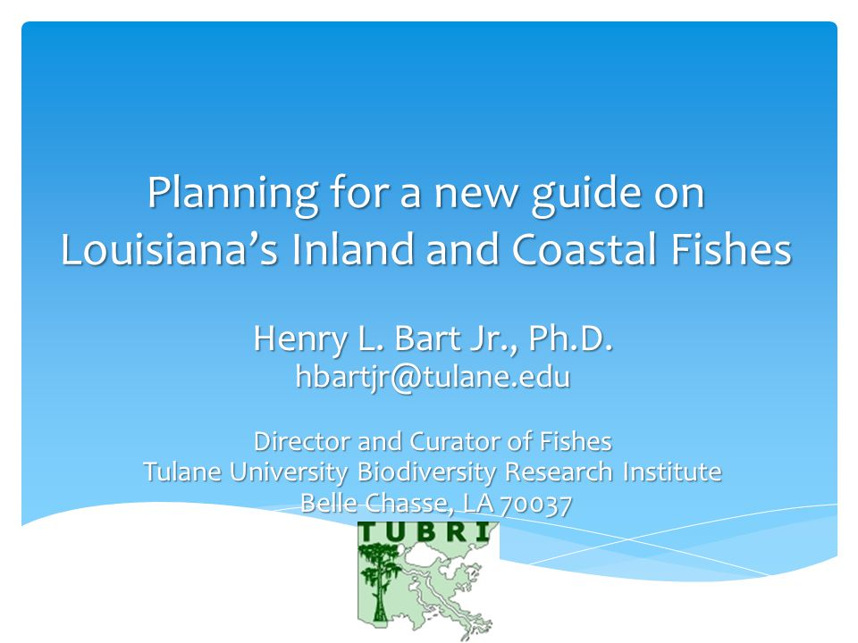 Planning for a new guide on Louisiana's Inland and Coastal Fishes Henry L.