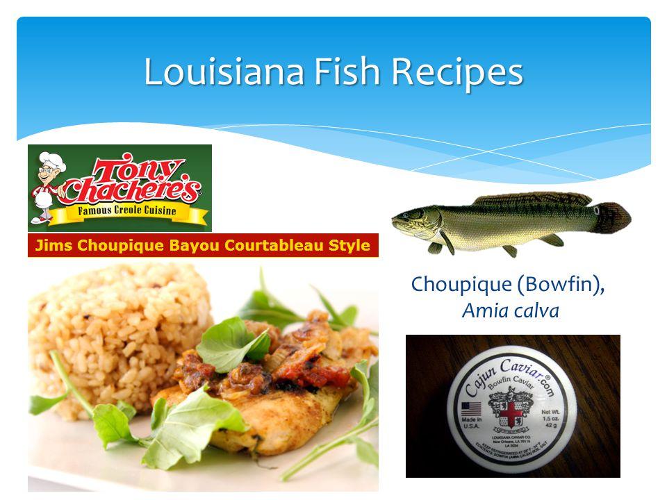 Louisiana Fish Recipes Choupique (Bowfin), Amia calva