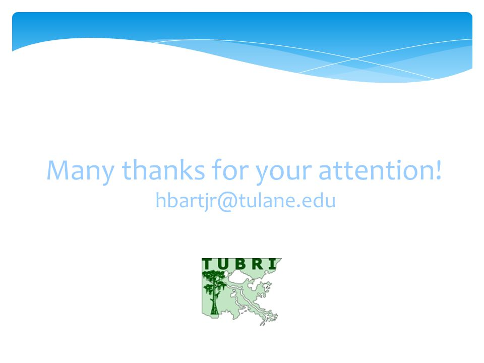 Many thanks for your attention! hbartjr@tulane.edu