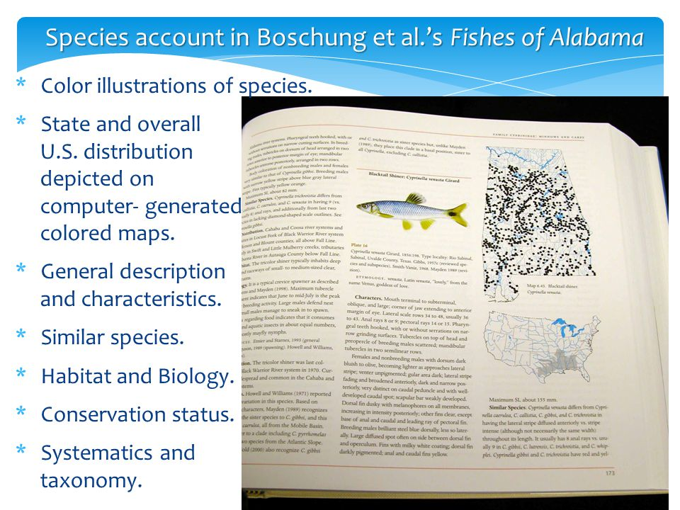 Species account in Boschung et al.'s Fishes of Alabama *Color illustrations of species. *State and overall U.S. distribution depicted on computer- gen