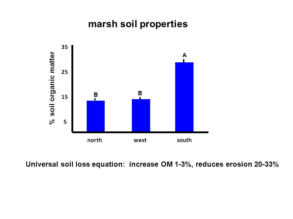 5 15 25 35 southnorthwest % soil organic matter A B B Universal soil loss equation: increase OM 1-3%, reduces erosion 20-33% marsh soil properties