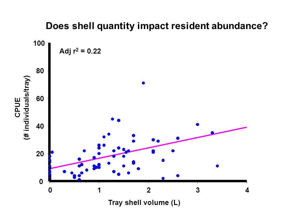 01234 0 20 40 60 80 100 CPUE (# individuals/tray) Tray shell volume (L) Adj r 2 = 0.22 Does shell quantity impact resident abundance?