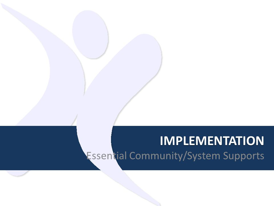 IMPLEMENTATION Essential Community/System Supports