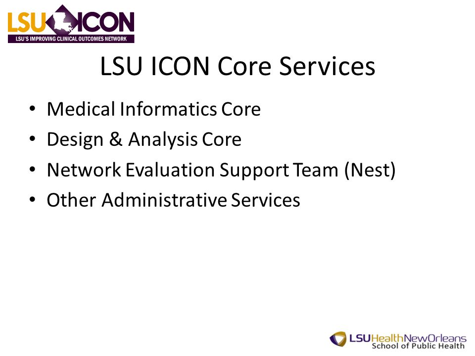 LSU ICON Core Services Medical Informatics Core Design & Analysis Core Network Evaluation Support Team (Nest) Other Administrative Services