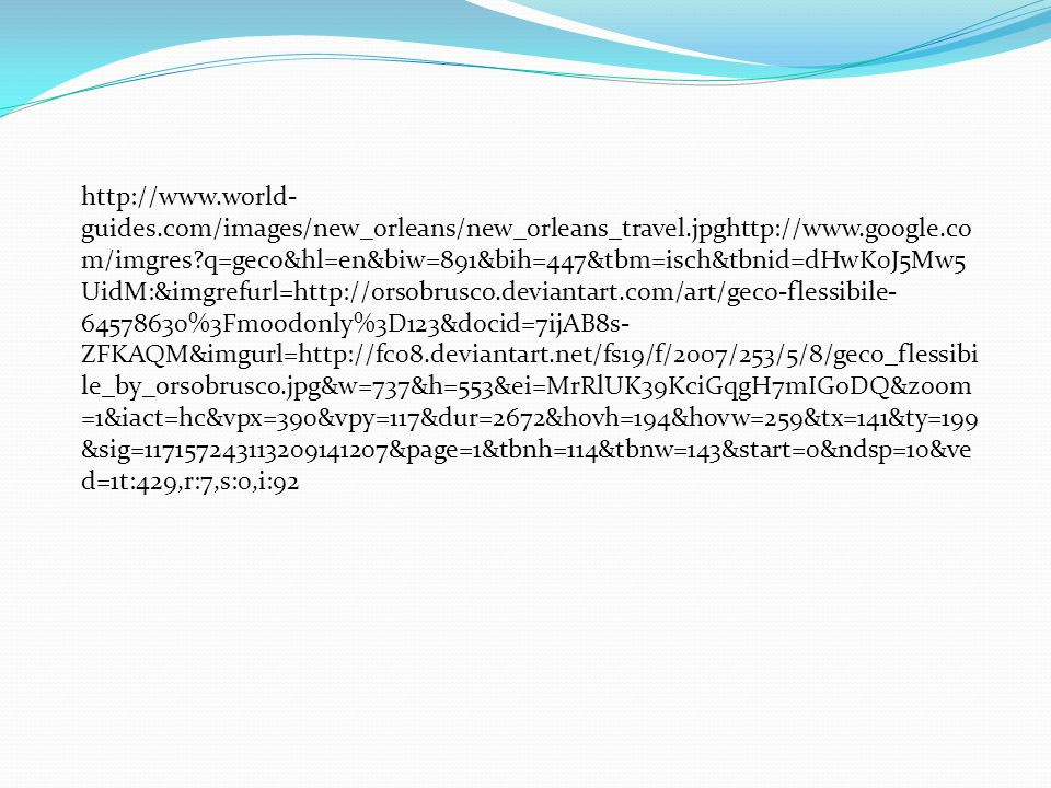 Sources http://www.google.com/imgres q=geco&hl=en&biw=8 91&bih=447&tbm=isch&tbnid=dHwK0J5Mw5UidM:&i mgrefurl=http://orsobrusco.deviantart.com/art/geco- flessibile- 64578630%3Fmoodonly%3D123&docid=7ijAB8s- ZFKAQM&imgurl=http://fc08.deviantart.net/fs19/f/20 07/253/5/8/geco_flessibile_by_orsobrusco.jpg&w=737 &h=553&ei=MrRlUK39KciGqgH7mIGoDQ&zoom=1&i act=hc&vpx=390&vpy=117&dur=2672&hovh=194&hov w=259&tx=141&ty=199&sig=117157243113209141207&pag e=1&tbnh=114&tbnw=143&start=0&ndsp=10&ved=1t:42 9,r:7,s:0,i:92