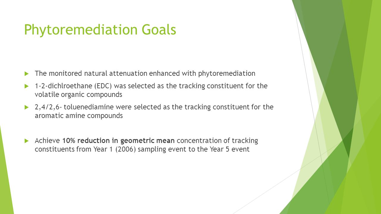 Phytoremediation Goals  The monitored natural attenuation enhanced with phytoremediation  1-2-dichlroethane (EDC) was selected as the tracking const