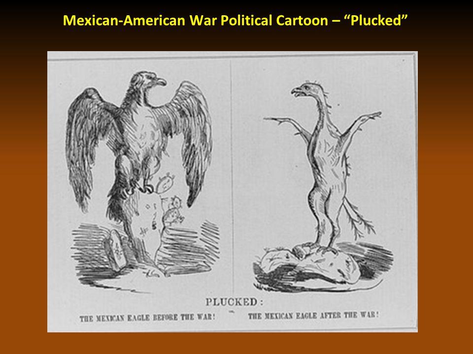 "Mexican-American War Political Cartoon – ""Plucked"""