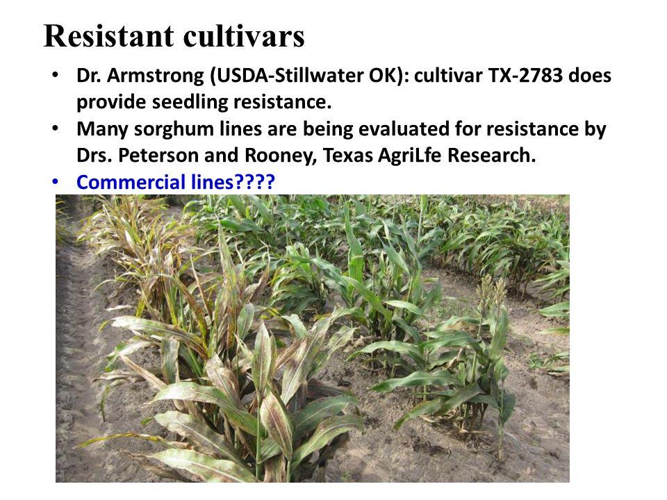 Resistant cultivars Dr.