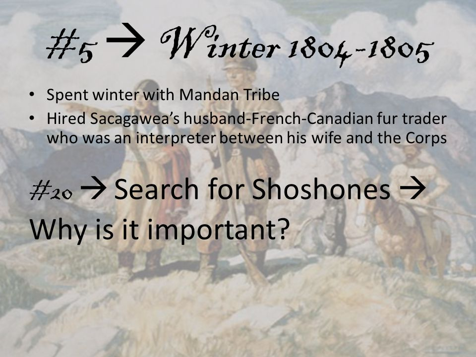 #5  Winter 1804-1805 Spent winter with Mandan Tribe Hired Sacagawea's husband-French-Canadian fur trader who was an interpreter between his wife and the Corps #20  Search for Shoshones  Why is it important
