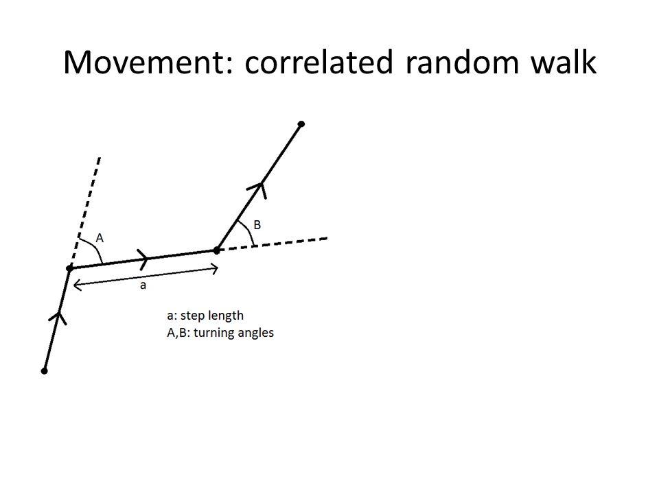 Movement: correlated random walk