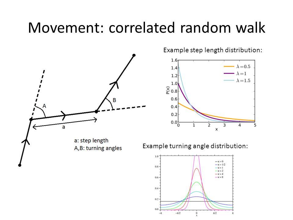 Movement: correlated random walk Example step length distribution: Example turning angle distribution: