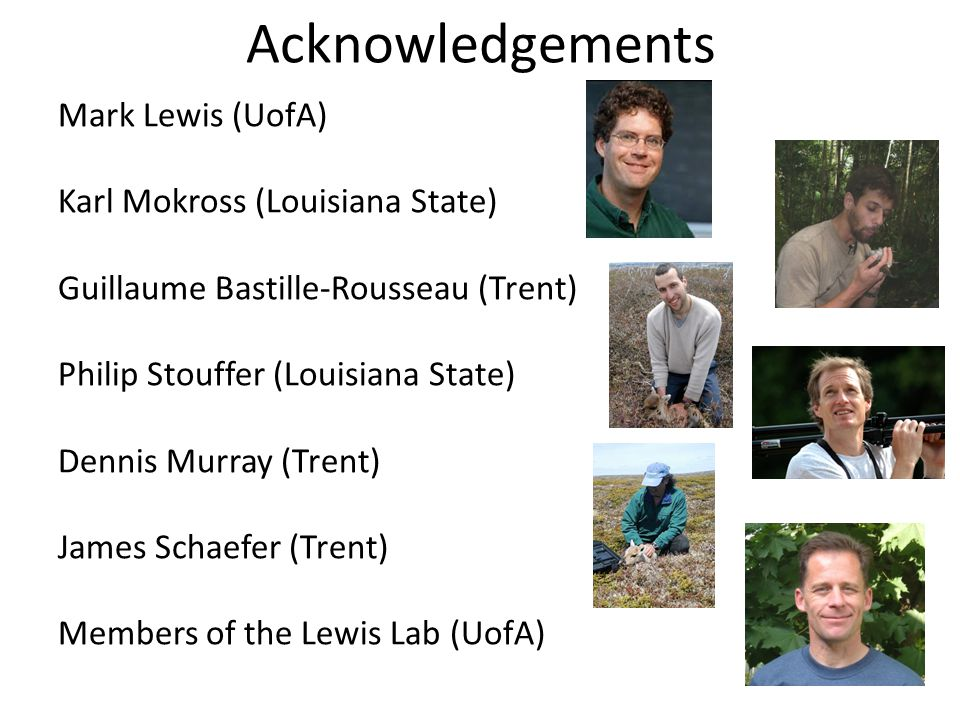Acknowledgements Mark Lewis (UofA) Karl Mokross (Louisiana State) Guillaume Bastille-Rousseau (Trent) Philip Stouffer (Louisiana State) Dennis Murray (Trent) James Schaefer (Trent) Members of the Lewis Lab (UofA)